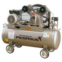 Máy nén khí Piston PEGASUS TM-V-0.258-70L